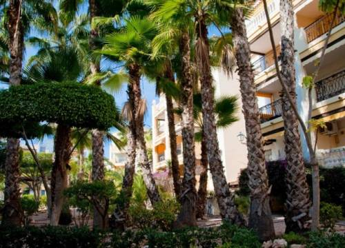 Apartment - Re-sale - Torrevieja - Central