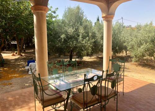 Country house - Re-sale - Aspe  - Tolomo