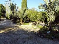 Re-sale - Villa - Fortuna