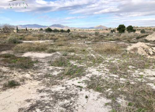 Country land - Re-sale - Aspe pedanias - Aljau