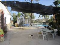 Re-sale - Villa - Elche  - Pussol