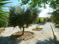 Re-sale - Country house - Monforte Del Cid - Monte Cid